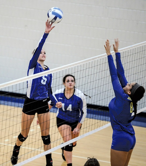 Lo Grad Commits To Play College Volleyball Austin Daily Herald Austin Daily Herald